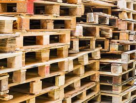 Wymagania fitosanitarne dla opakowań drewnianych wwożonych do Rosji
