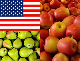 Potencjalne uruchomienie eksportu świeżych owoców jabłek i gruszek do USA