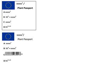 Nowe Prawo Zdrowia Roślin – jednolite wzory paszportów roślin w Unii Europejskiej