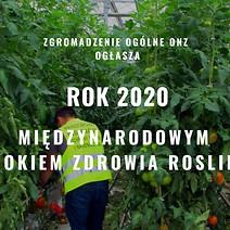 Z ostatniej chwili: Zgromadzenie Ogólne ONZ proklamowało rok 2020 Międzynarodowym Rokiem Zdrowia Roślin!