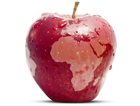 Informacja dla podmiotów eksportujących jabłka do Chin i Wietnamu