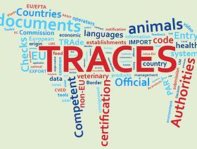 System TRACES - instrukcja użytkownika
