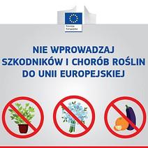 Wykaz roślin i produktów roślinnych zakazanych w imporcie - informacja dla pasażerów