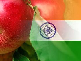 Rozmowy o eksporcie polskich owoców do Indii